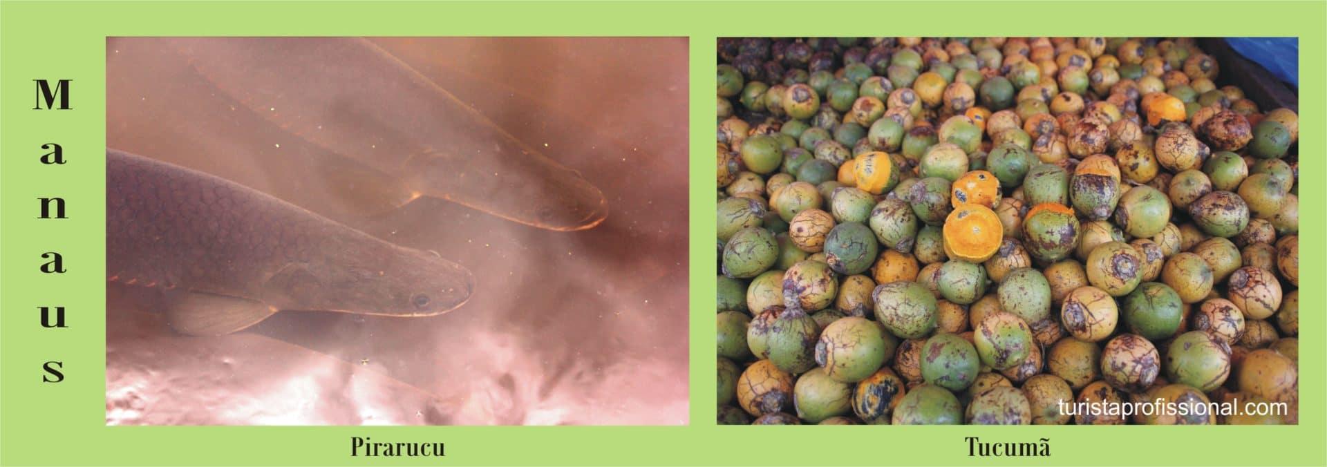 MAnaus - Pirarucu e tucumã