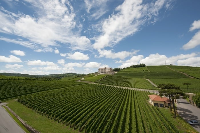 Vinhos do Rio Grande do Sul
